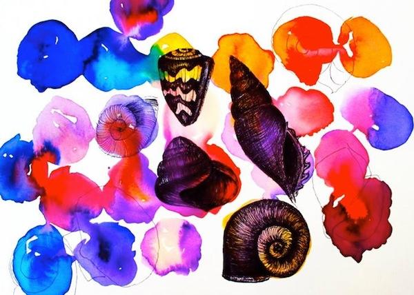felicity palmateer art - shells