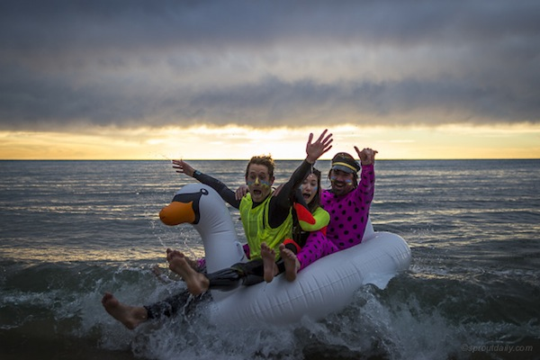 Flouro Friday - surfing swan