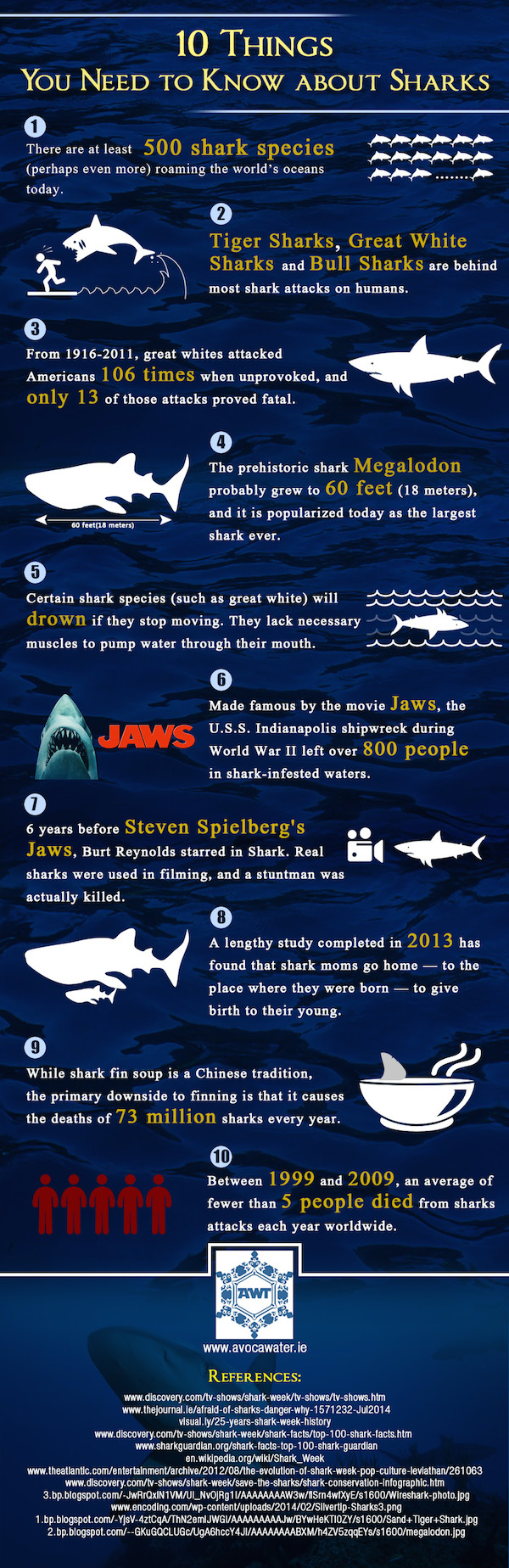 shark week infographic