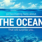 50 fascinating ocean facts