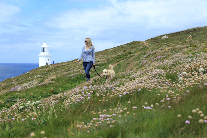 Trevose Head dog walking by John Miller